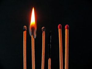 burned out matchsticks