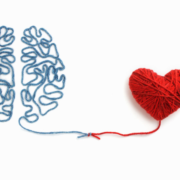 brain and heart - physician's crossing comfort zone